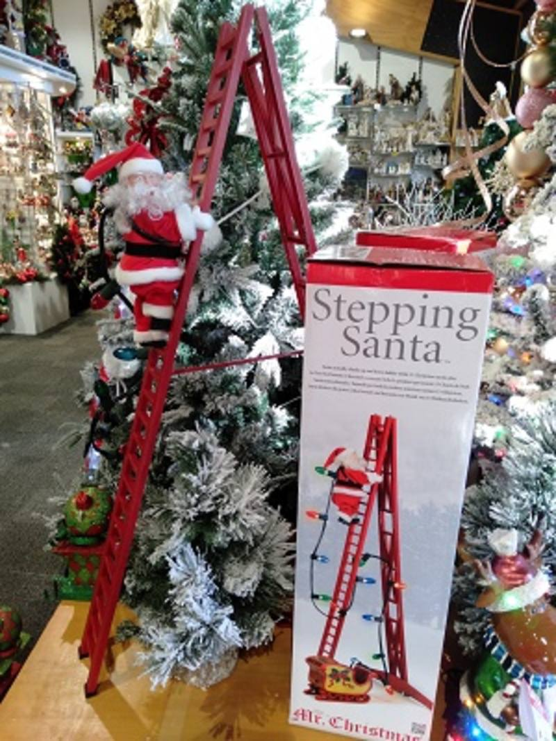SPECIAL -  Santa on Ladder- 2NDNOT  GOING
