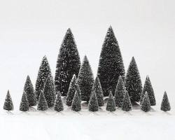Assorted Pine Trees.