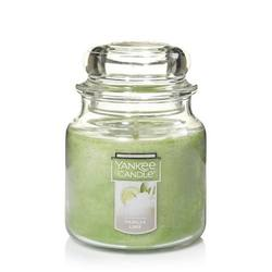 Yankee - Vanilla Lime - Medium